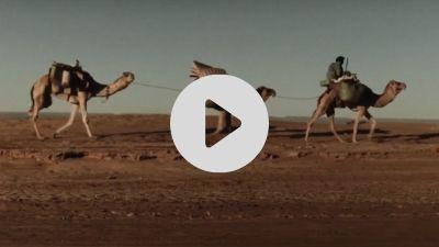 fw-maroko-film